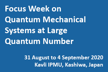 Focus Week on Quantum Mechanical Systems at Large Quantum Number